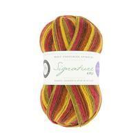 WYS Autumn Leaves Winwick Mum Seasons Signature 4 Ply Yarn 100g
