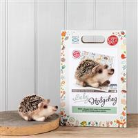 The Crafty Kit Company Baby Hedgehog Needle Felting Kit