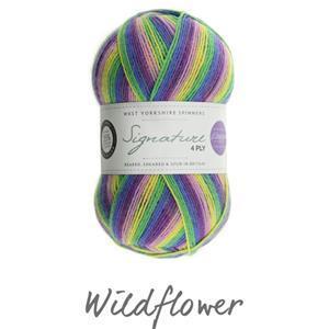 WYS Winwick Mum Wildflower Signature 4 ply yarn 100g