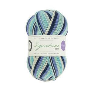 WYS Winwick Mum Winter Icicle Seasons Signature 4 ply yarn 100g