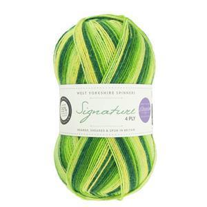 WYS Winwick Mum Spring Green Seasons Signature 4 ply yarn 100g